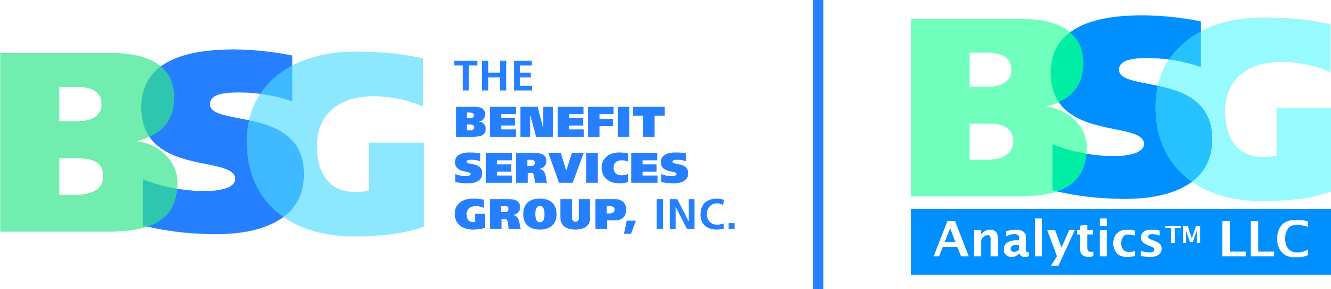 The Benefits Services Group, Inc