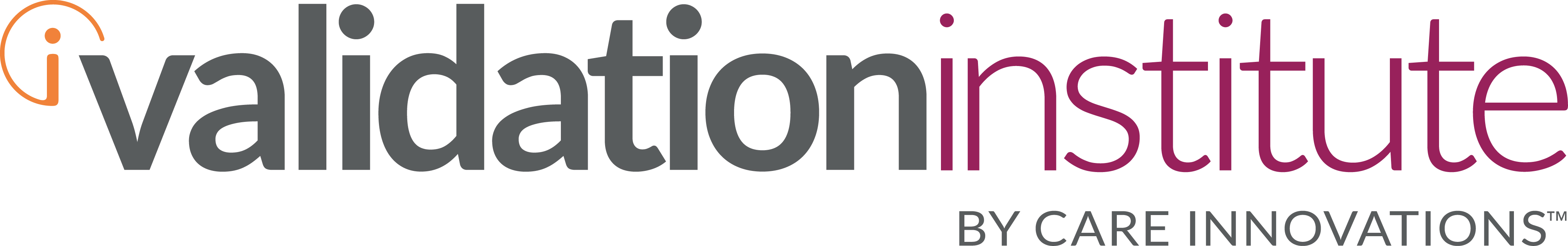 The Validation Institute Logo